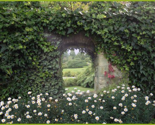 Gartenbanner Gartenposter beispiel84